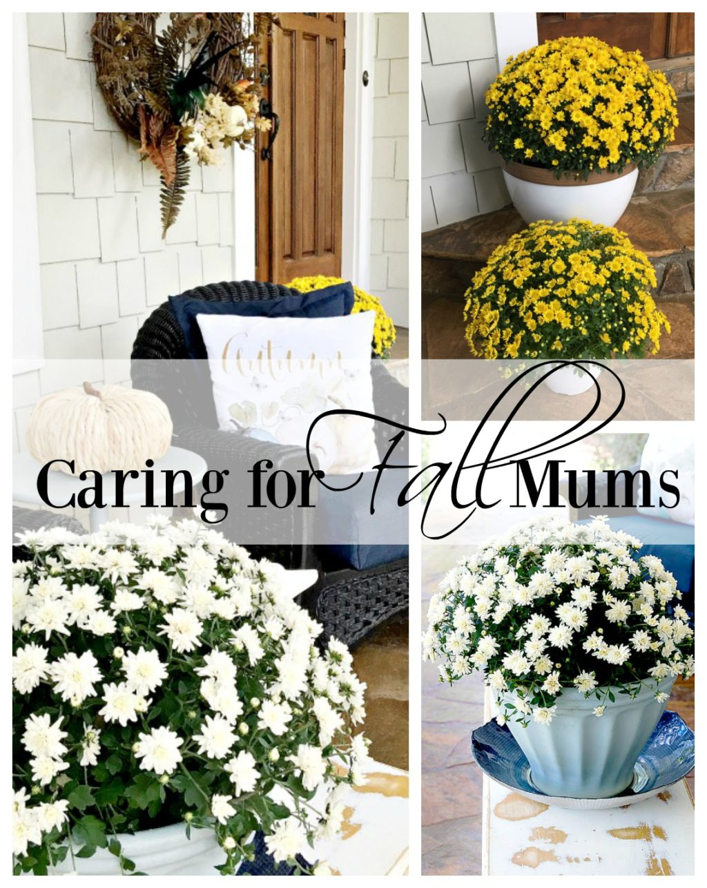 caring-for-mums
