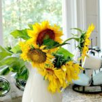 sunflower tips
