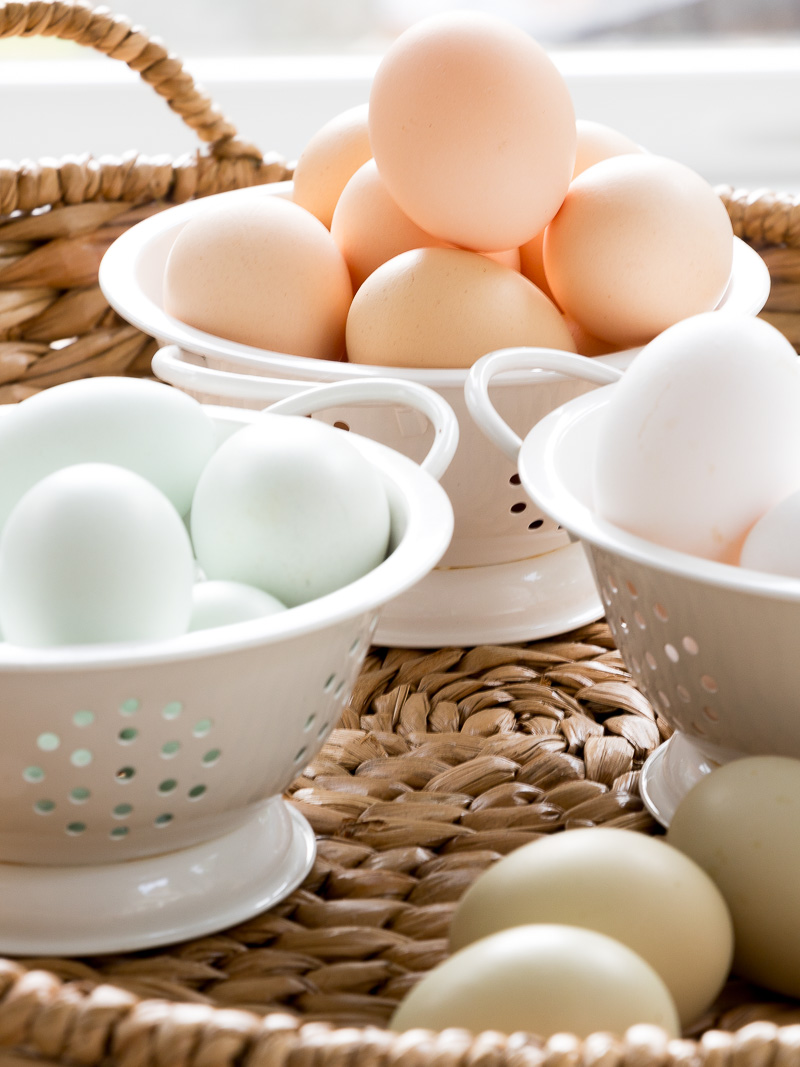friday at the farm why are my chickens eggs different colors