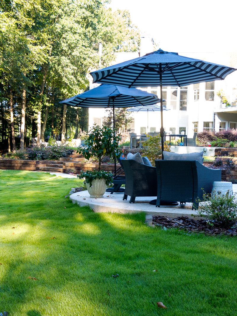 Watering Tips and Guidelines for New Sod