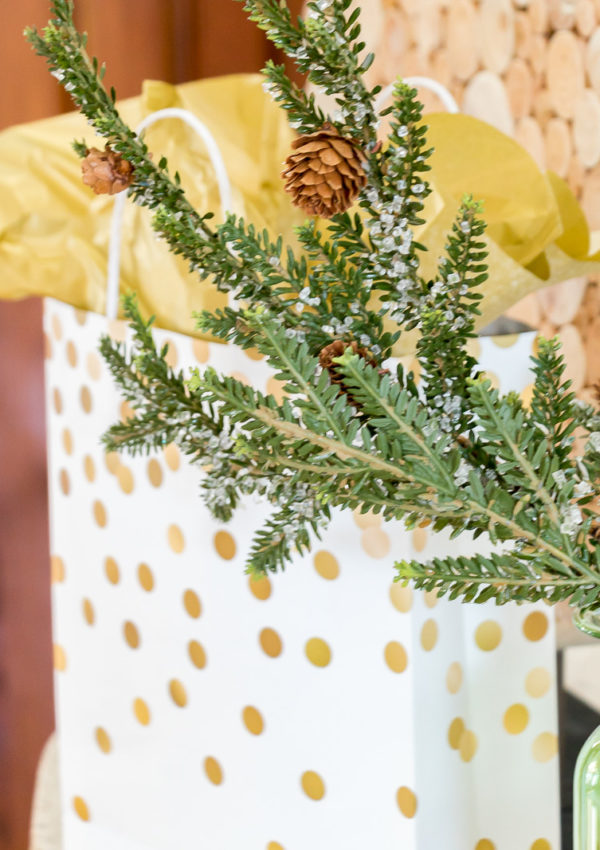 10 Hostess Gifts Under $10 for the holiday season